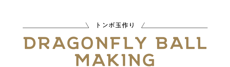 dragonfly-ball-making
