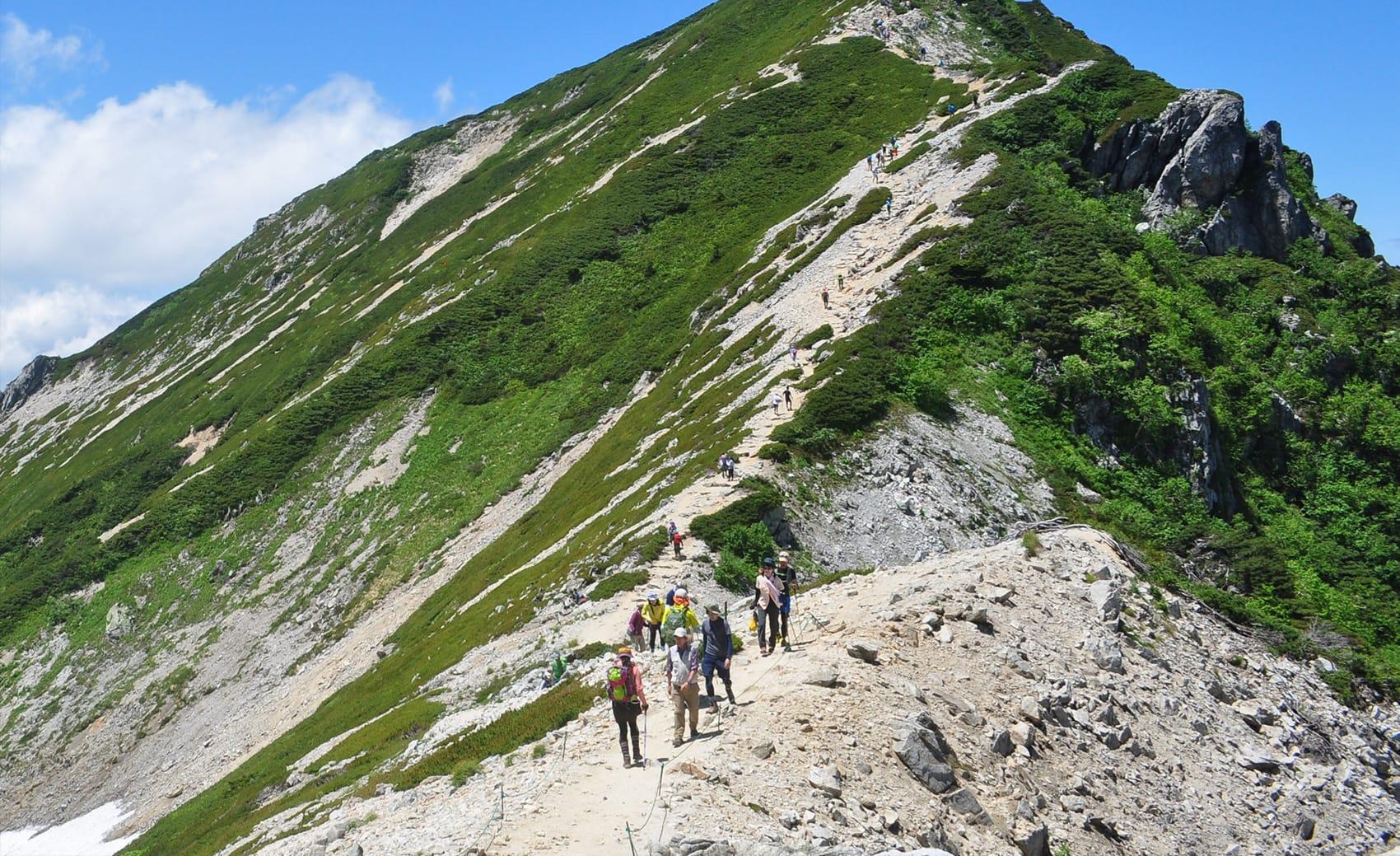 登山・トレッキングトップ